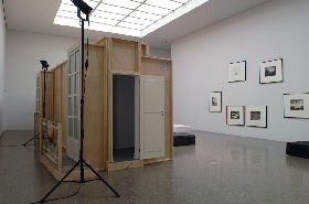 Simon Starling. ›Three Birds Seven Stories, Interpolations and Bifurcations‹